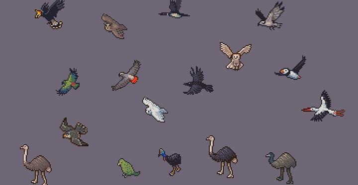 Посмотрите на этих прекрасных птичек из Dwarf Fortress